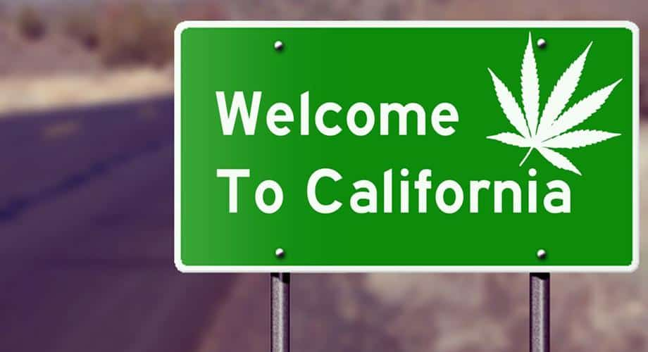 Growing and selling cannabis in California