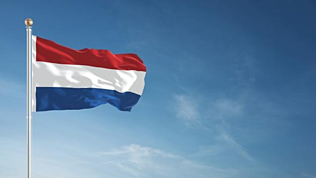 Нидерланды запустят реестр бенефициаров компаний в следующем году