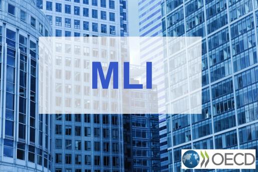 Татьяна Клименко - Как работает MLI Конвенция в Украине?