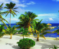 Belize Has Introduced Economic Substance Forms