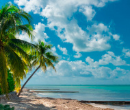 Cayman Islands Made Companies Register Public