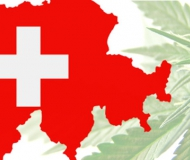 Production and sale of cannabis products containing products in Switzerland