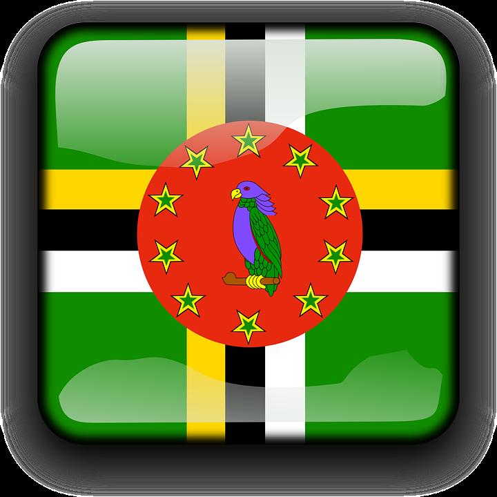 Про обязательное хранение бухгалтерской отчётности компаниями на Доминике