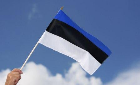 Obtaining of the license for investment activities in Estonia